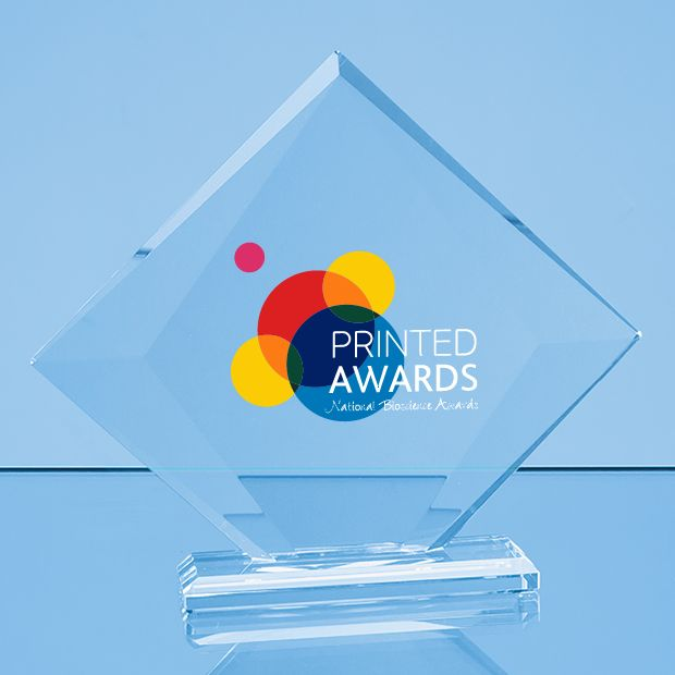 Clear Glass Vision Diamond Printed Trophy Award in a Gift Box