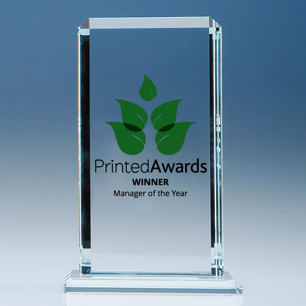 Clear Glass Echo Printed Award
