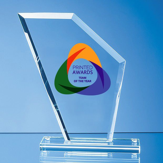 Jade Glass Bevelled Edge Wing Printed Award