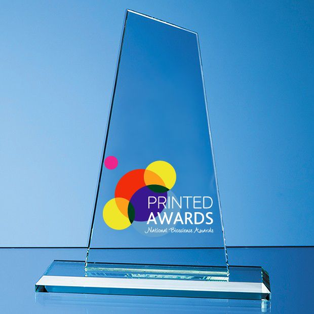 Jade Glass Mountain Printed Trophy Award